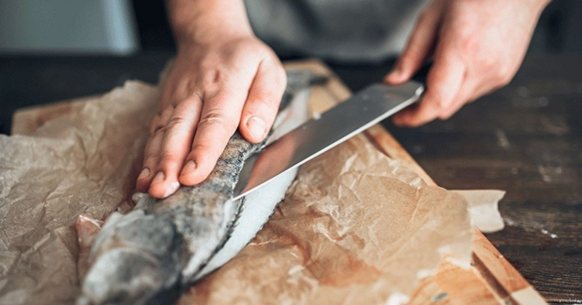 cuchillos fileteadores