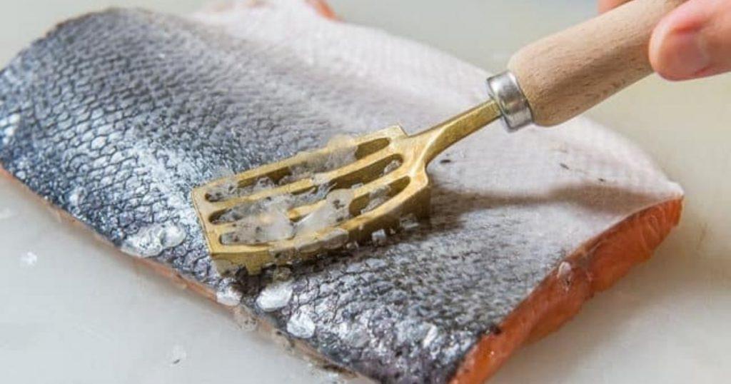 descamadores para pescado